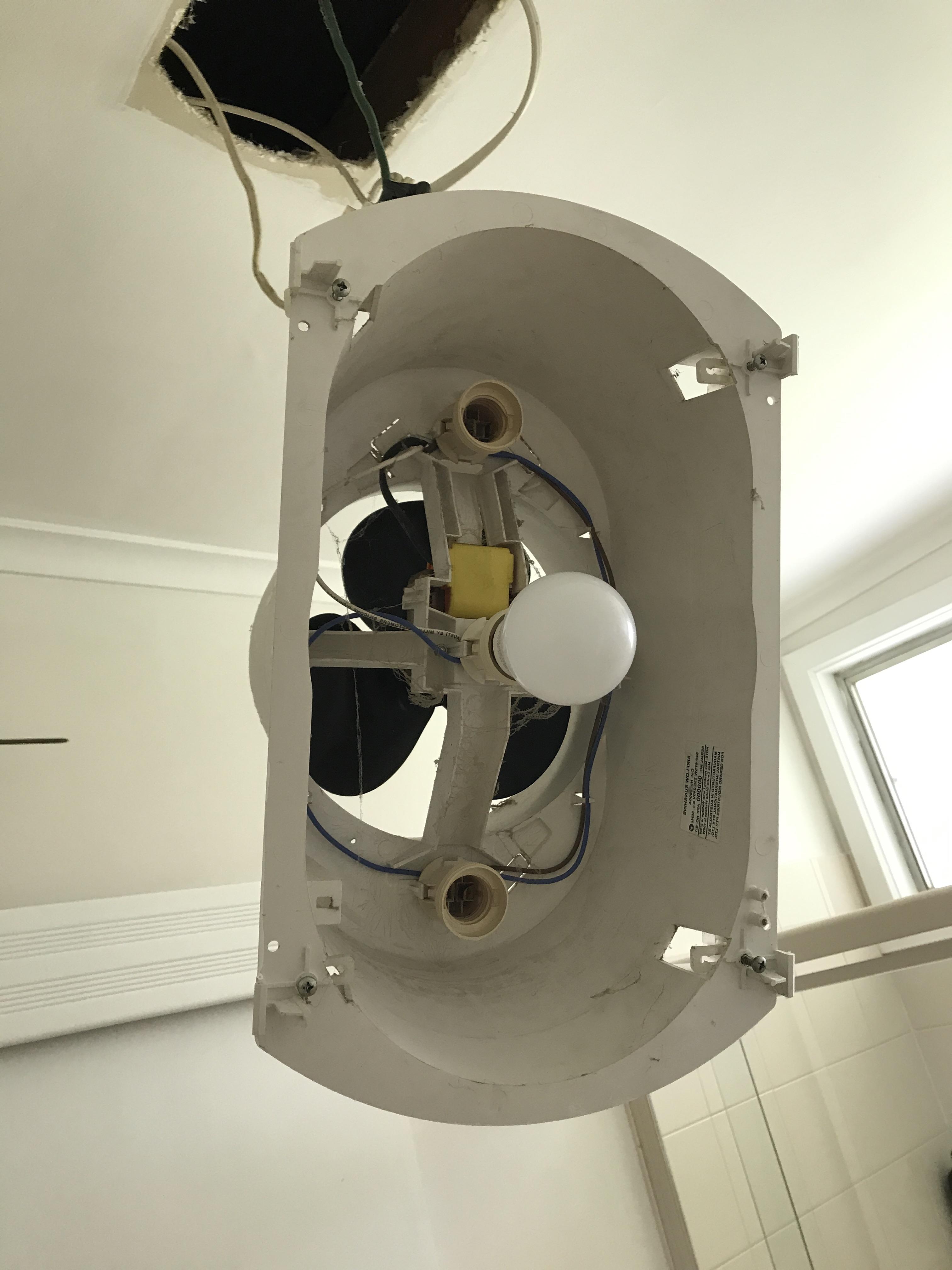 Appliance fan repair by electrician in Mornington