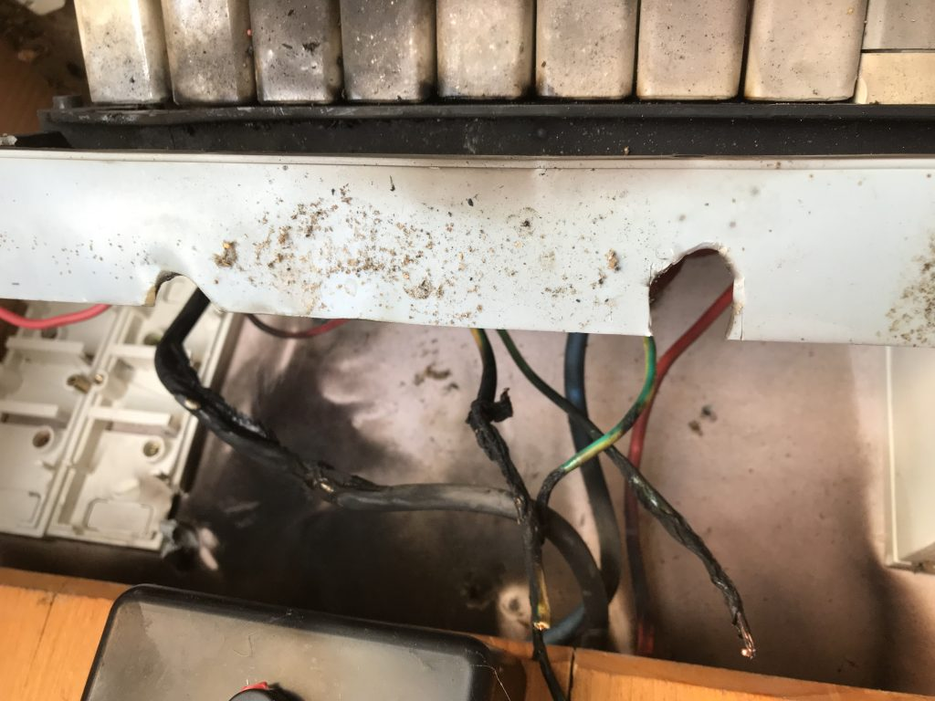 Electrical Contractor Frankston repair assignment